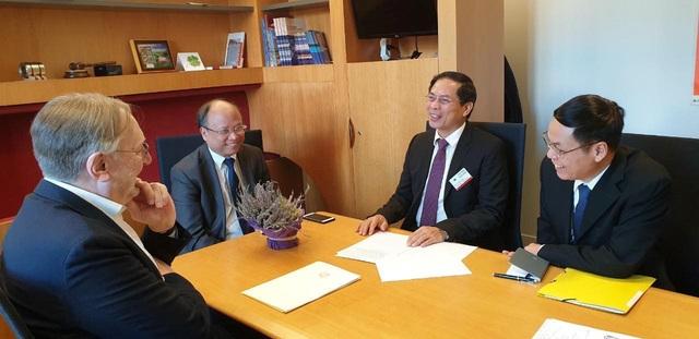Việt Nam và Nghị viện châu Âu trao đổi về tiến trình phê chuẩn EVFTA và EVIPA - Ảnh 3.
