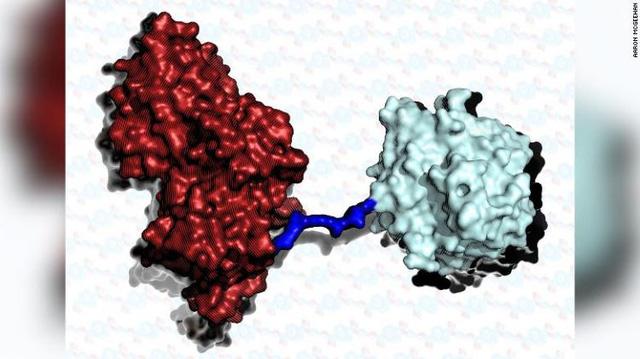 """""""Siêu enzyme"""" mới có thể phân hủy nhựa nhanh gấp 6 lần - Ảnh 1."""