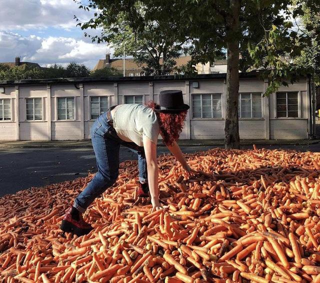 Kỳ lạ, đổ 240.000 củ cà rốt ra phố để trưng bày nghệ thuật - Ảnh 1.