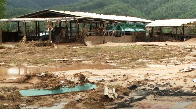 Khoảng 7 triệu người dân miền Trung đang sống ở nơi thiếu an toàn - Ảnh 1.