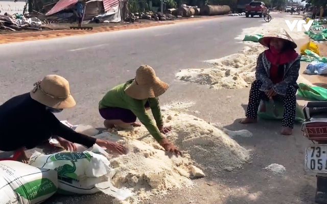 Nỗi buồn của người dân tại vựa lúa miền Trung sau lũ - Ảnh 1.