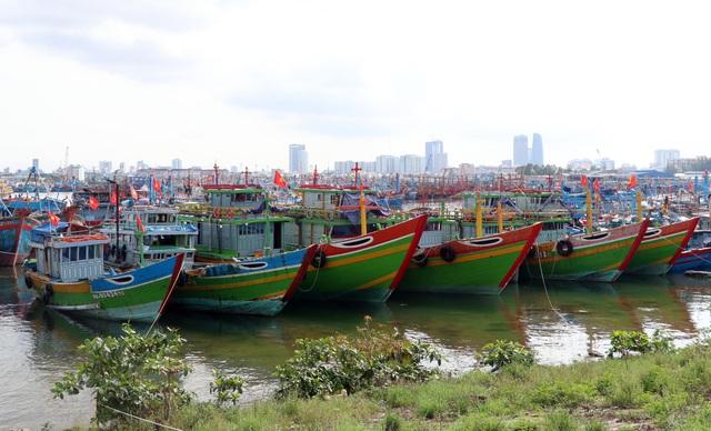 Người dân Đà Nẵng đổ xô mua đồ phòng, chống bão số 9 - Ảnh 2.