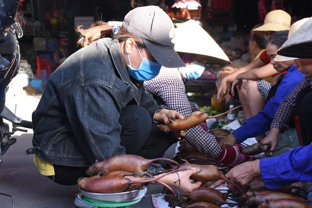Làng bắt chuột Hải Dương vào mùa đắt hàng - Ảnh 11.