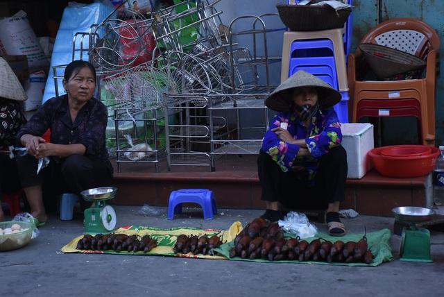 Làng bắt chuột Hải Dương vào mùa đắt hàng - Ảnh 15.
