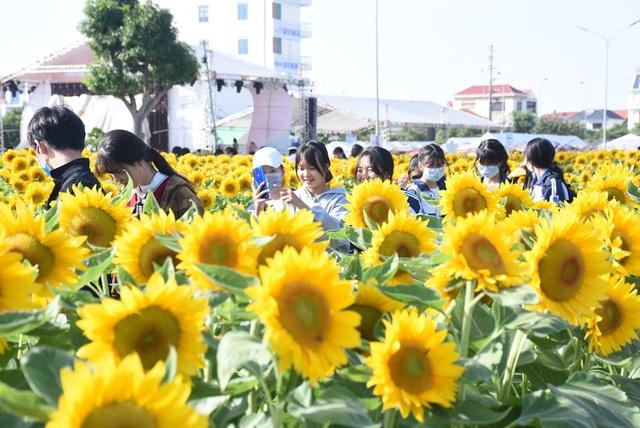 Vườn hướng dương 26.000 bông mở cửa miễn phí đón khách - Ảnh 11.