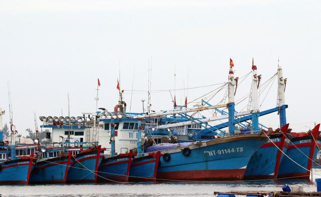 Ninh Thuận thành lập 3 đoàn kiểm tra tại các vùng xung yếu - Ảnh 1.