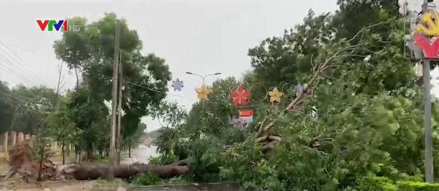 Miền Trung - Tây Nguyên oằn mình vì bão số 9 - Ảnh 1.