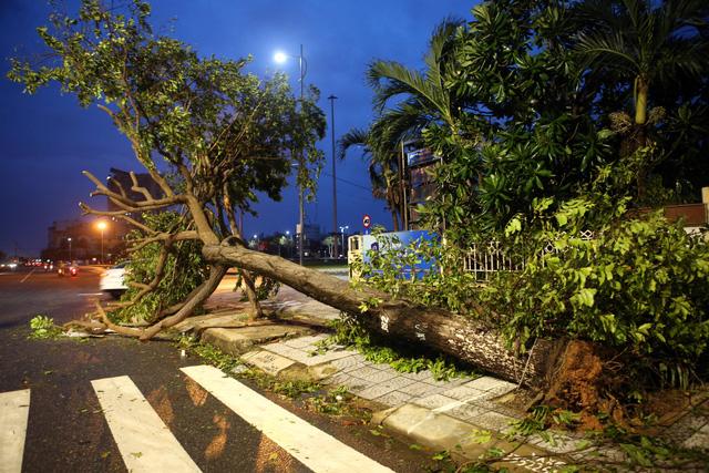 Thành phố Đà Nẵng tan hoang sau bão số 9 - Ảnh 11.