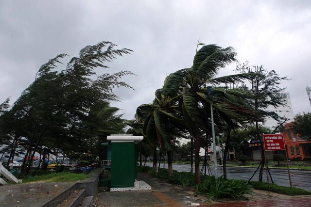 Thành phố Đà Nẵng tan hoang sau bão số 9 - Ảnh 4.