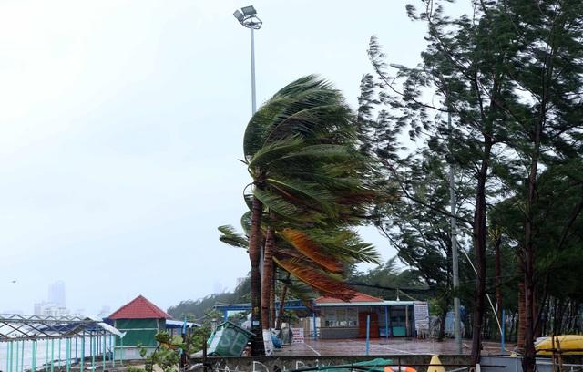 Thành phố Đà Nẵng tan hoang sau bão số 9 - Ảnh 3.