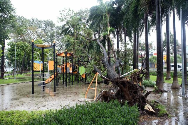 Thành phố Đà Nẵng tan hoang sau bão số 9 - Ảnh 1.