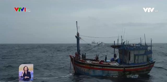 Khẩn trương tìm kiếm ngư dân Bình Định bị nạn ở Khánh Hòa - Ảnh 1.
