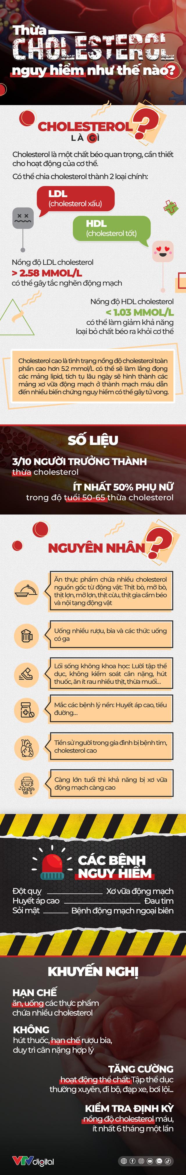 [INFOGRAPHIC] Thừa cholesterol nguy hiểm như thế nào? - Ảnh 1.