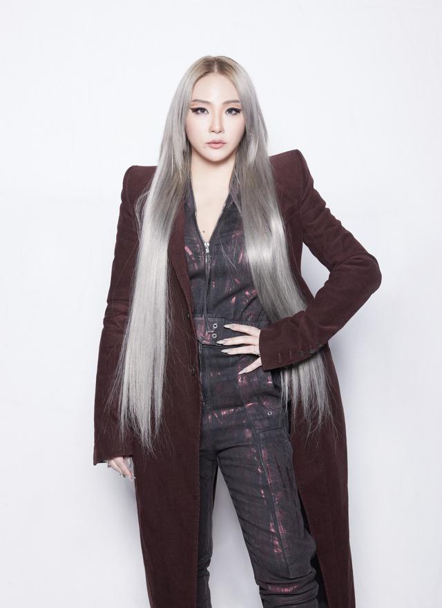 CL (2NE1) hết lời ca ngợi BTS - Ảnh 1.