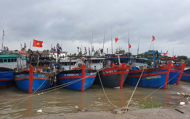 Boats in safe anchorage in Hoang Mai Town, Nghe An Province. (Photo: NDO/Thanh Chau)