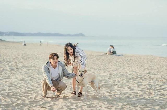 Ji Chang Wook và Kim Ji Won tình tứ trong dự án phim mới - Ảnh 2.