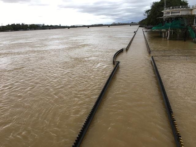 Bão số 13 ảnh hưởng, Thừa Thiên - Huế có gió rất mạnh quật đổ cây - Ảnh 2.
