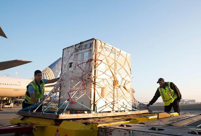 Nhu cầu xe container lạnh tăng cao trước triển vọng vaccine COVID-19 - Ảnh 1.