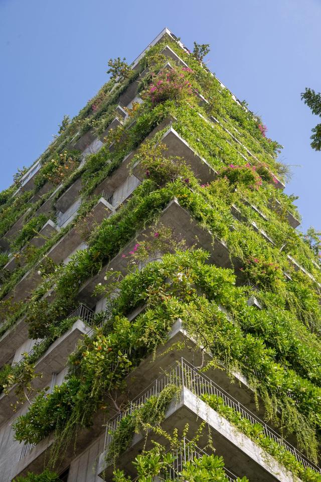 KTS Võ Trọng Nghĩa có 2 công trình giành giải thưởng kiến trúc Architecture Master Prize 2020 - Ảnh 5.