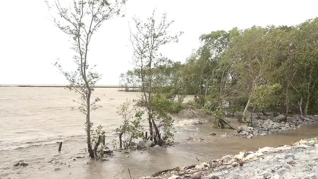 Đê biển Tây sạt lở nghiêm trọng mùa mưa bão - Ảnh 4.