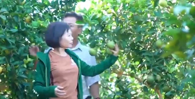 Người nông dân đạt huân chương lao động hạng III - Ảnh 1.