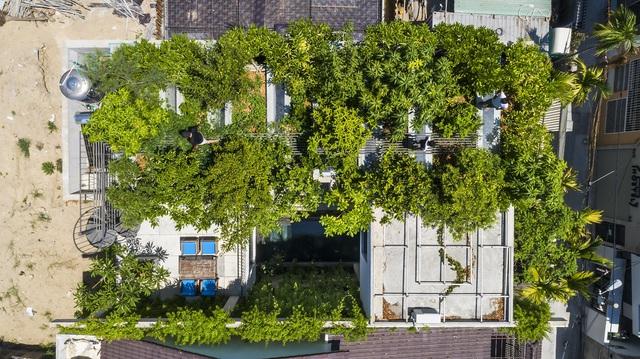 Công trình Thắng House của KTS Võ Trọng Nghĩa giành giải thưởng Nhà đô thị của năm - Ảnh 4.