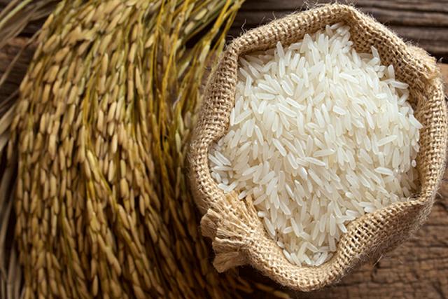Người Pháp tại Bỉ muốn ăn gạo ST24, đến mục tiêu tự cường trên Đại lộ hội nhập của Việt Nam - Ảnh 1.