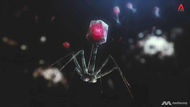 Cuộc chiến chống vi khuẩn gây bệnh - Những công cụ mới - Ảnh 3.
