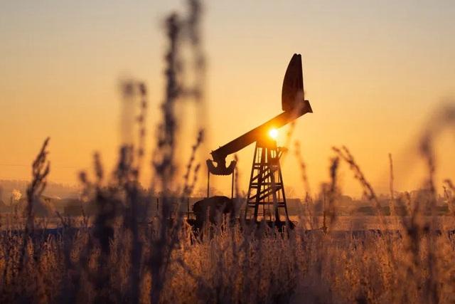 OPEC+ nhất trí tăng sản lượng dầu - ảnh 1
