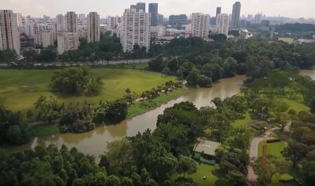 Tương lai nông nghiệp của Singapore bắt đầu từ những khu vườn nhỏ - Ảnh 2.