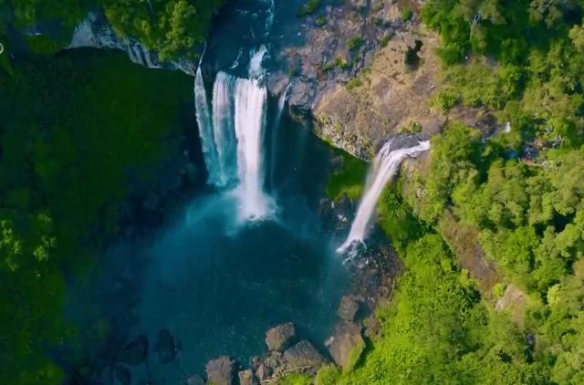 Biển hồ chè Pleiku - Sắc xanh đầy sức sống - ảnh 4