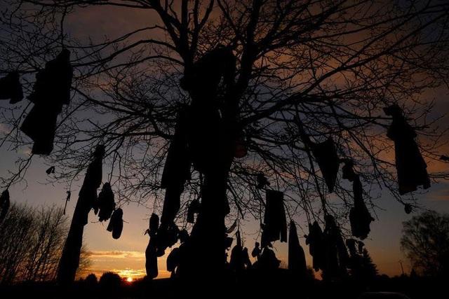 Treo khẩu trang lên cây, kiểu cầu nguyện mới thời COVID-19 - ảnh 3