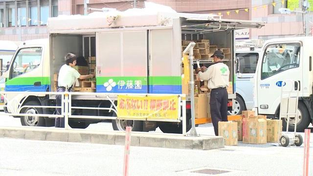Việt Nam chiếm 55% trong số lao động được cấp thị thực tại Nhật Bản - Ảnh 1.