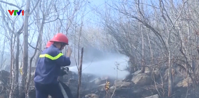 Báo động đỏ nguy cơ cháy rừng tại các tỉnh phía Nam - Ảnh 1.