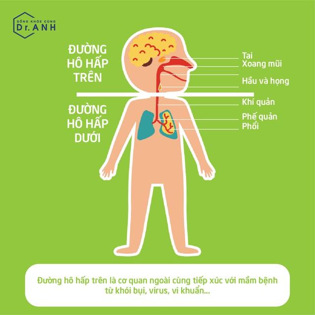 Hiểu đúng về viêm đường hô hấp trên của trẻ để xử lý đúng cách - Ảnh 1.