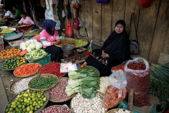 Indonesia mở cửa cho các mặt hàng hành, tỏi nhập khẩu - Ảnh 1.