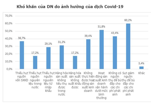 Đại dịch COVID-19: Doanh nghiệp đã vượt qua cú sốc thế nào? - Ảnh 2.