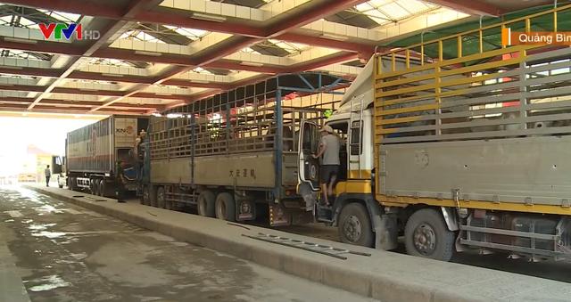 Cửa khẩu Cha Lo: Kiểm dịch trâu, bò nhập khẩu qua loa, tiềm ẩn nguy cơ dịch bệnh - Ảnh 1.