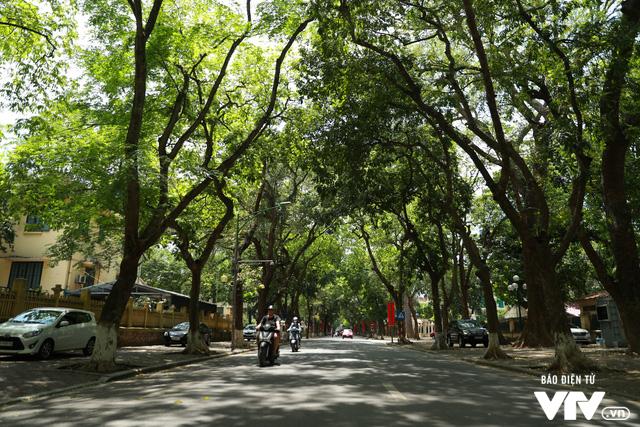 Đường phố Hà Nội nhuộm màu nắng vàng - Ảnh 1.