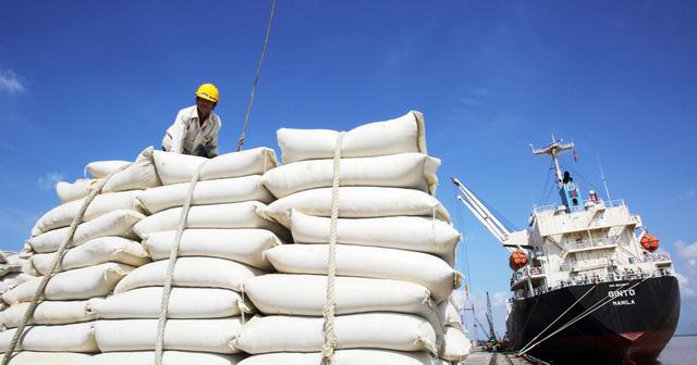 Doanh nghiệp xù hợp đồng gạo dự trữ quốc gia vẫn được tái đấu thầu - ảnh 1
