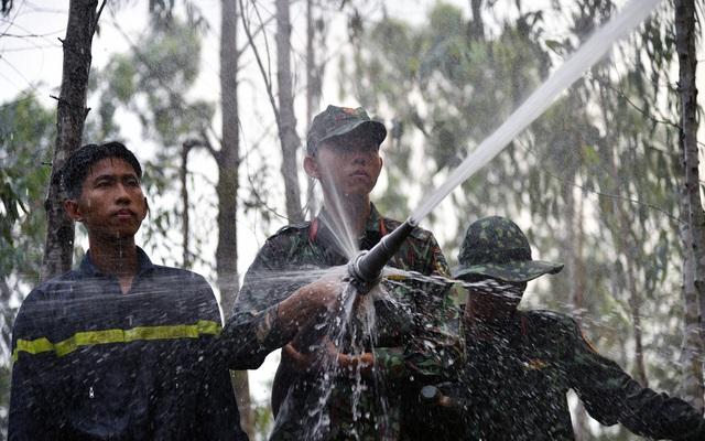 Hàng chục ha rừng tràm ở Kiên Giang bị bà hỏa thiêu rụi - Ảnh 2.
