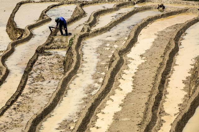 Mùa nước đổ trên những thửa ruộng bậc thang - Đẹp bình dị - ảnh 6