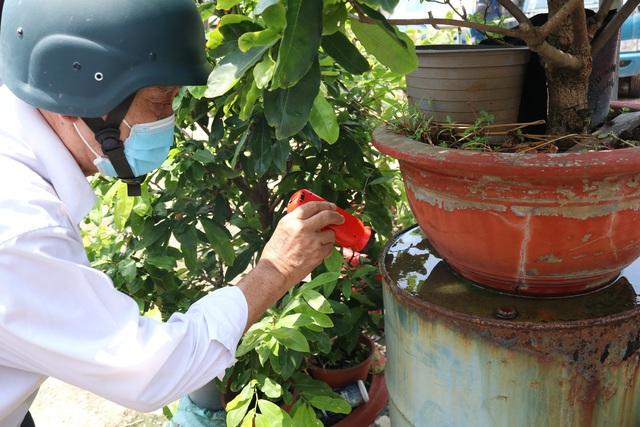 Thành phố Hồ Chí Minh: Cảnh báo dịch bệnh sốt xuất huyết vào mùa - Ảnh 1.