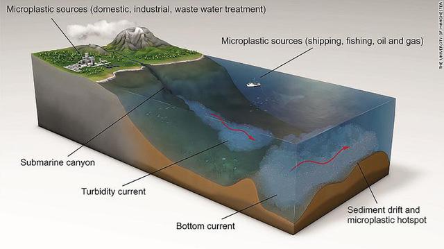 Phát hiện mức kết tụ vi nhựa dưới đáy biển cao nhất lịch sử - ảnh 3
