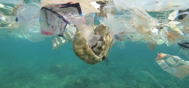 Phát hiện mức kết tụ vi nhựa dưới đáy biển cao nhất lịch sử - ảnh 1