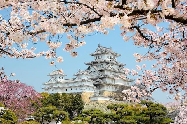 Nhật Bản treo giải 250 USD cho khách du lịch trực tuyến - Ảnh 1.