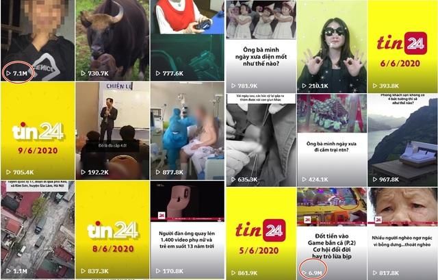 TikTok vtv24news - Vựa muối của VTV Digital cán mốc 1 triệu người theo dõi - ảnh 3