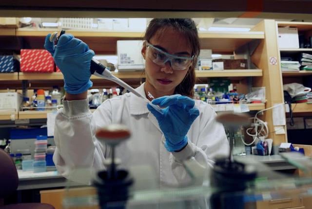 Singapore dự kiến thử nghiệm vaccine COVID-19 trên người vào tháng 8 - Ảnh 1.