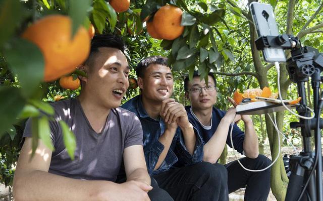 """Nông dân Trung Quốc """"ăn nên làm ra"""" nhờ bán nông sản trực tuyến - Ảnh 1."""