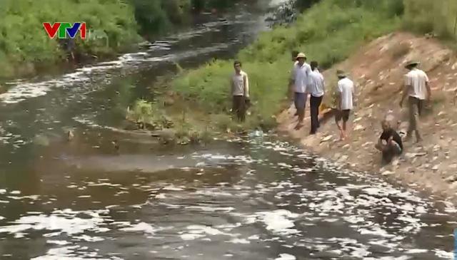 Hàng nghìn mẫu ruộng bỏ hoang vì nguồn nước bị ô nhiễm - Ảnh 1.